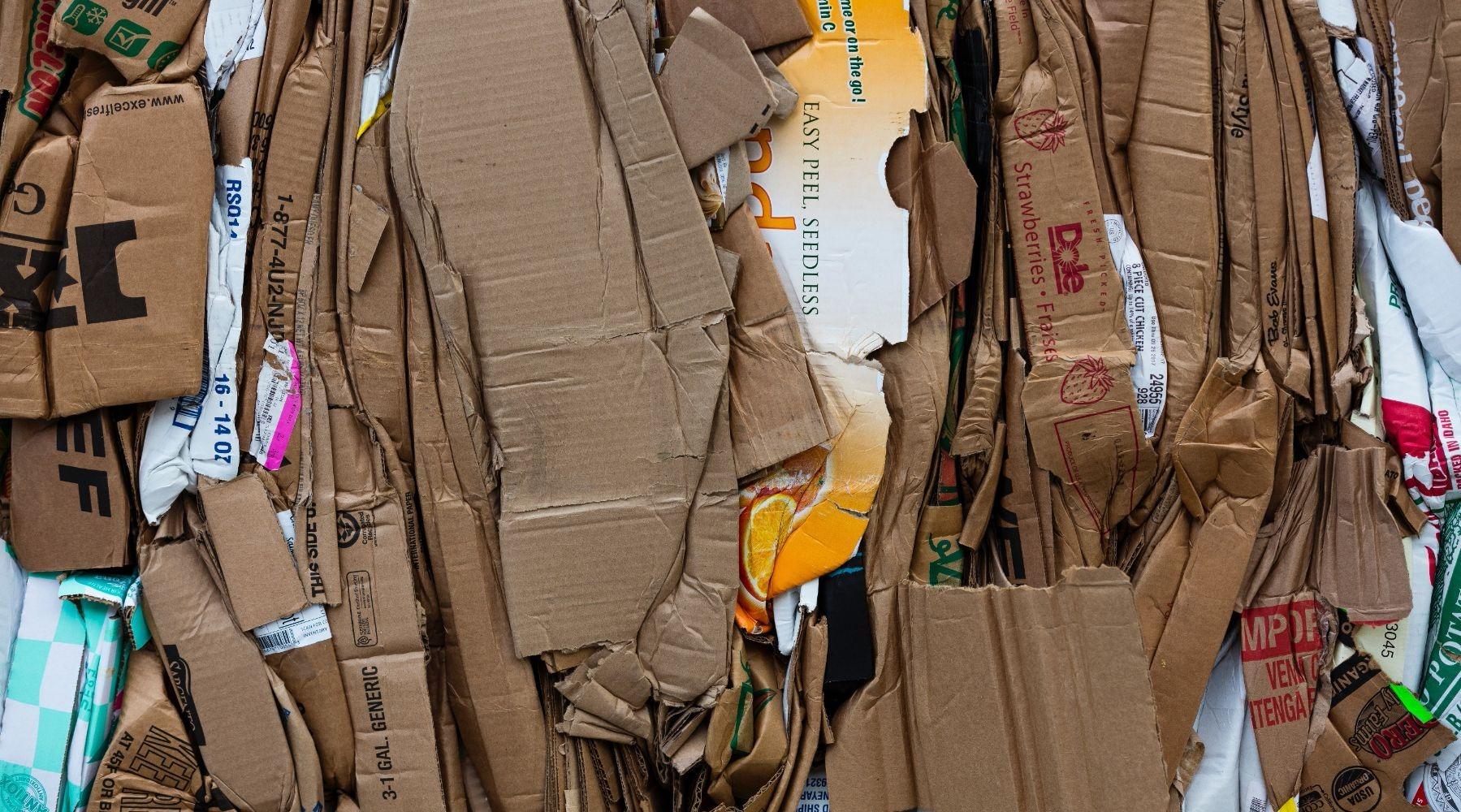 Waarom afval scheiden zo belangrijk is